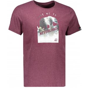 Pánské triko s krátkým rukávem ALPINE PRO TIBERIO 5 MTSK222 HNĚDÁ