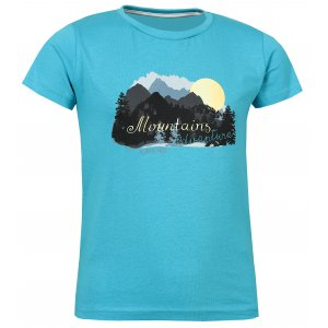 Dětské tričko s krátkým rukávem ALPINE PRO ANANO KTSL099 SVĚTLE MODRÁ